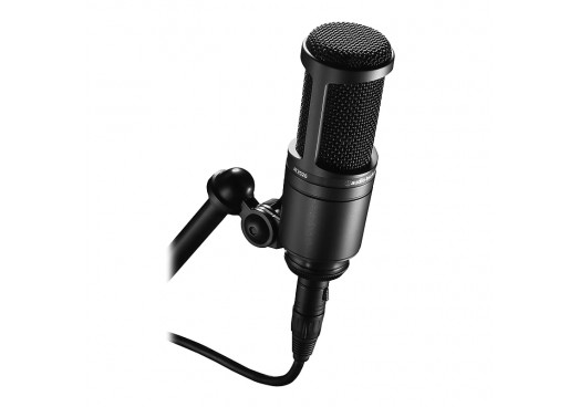 Microfoane (2)